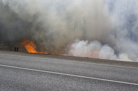 rising dead: Road in fire and smoke, concept of natural disaster