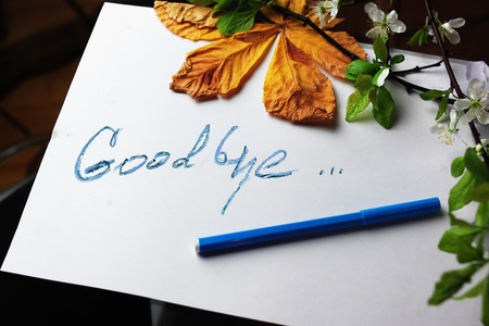 good bye: Hand written message Good Bye on a piece pf paper concept of relationship