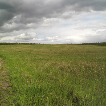 upcoming: Panorama of a green meadow with a moody sky and rain upcoming outdoor square shot