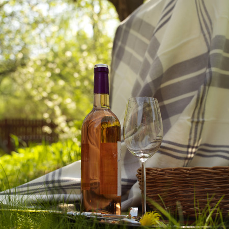 pink wine: Bottle of pink wine with an empty longstemned glass laid on a plaid at picnic, outdoor square shot with selective focus