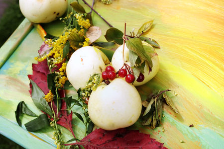 seson: Yellow ripe apples laid on the yellow table, concept of seson change Stock Photo