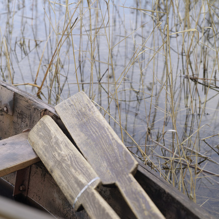 shallow water: Old rowing boat with oars in the shallow water and reeds, outdoor square shot