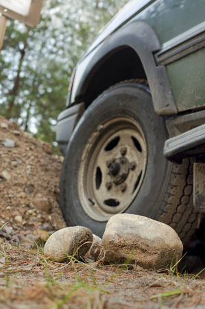 cropped: Car stuck in forest, selective focus cropped shot. Vertical composition. Stock Photo