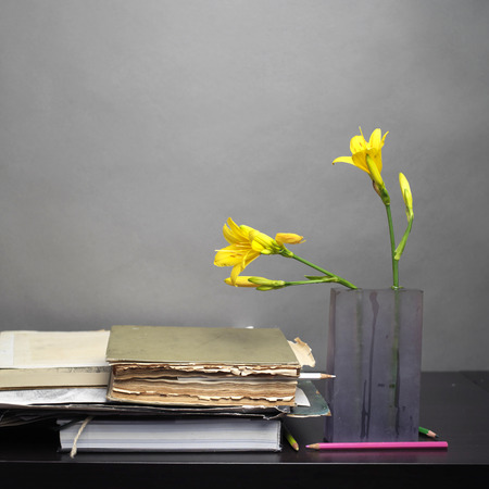 interior shot: Old books stack next to the vase with yellow flowers, front interior shot