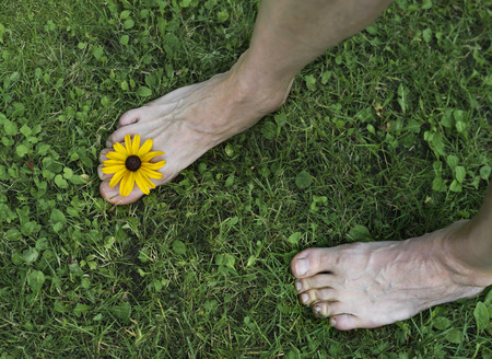 bare feet: Male bare feet with a yellow flower between the fingers stepping down the grass. Overhead horizontal shot Stock Photo