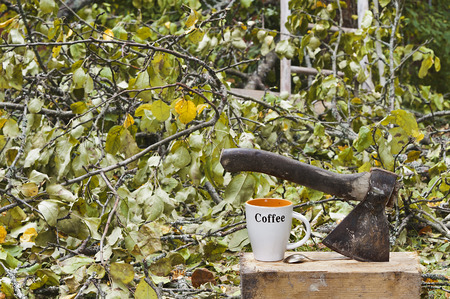treed: Ax and coffee mug in the foreground and fallen treed and branches in the background, filtered shot