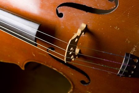 cellos: Closeup shot of a looking old cello in details