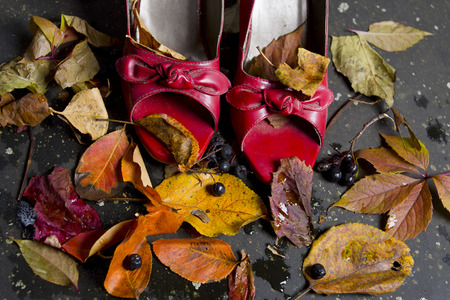 no heels: Red high heels and colorful autumn leaves around, changing weather concept, studio cloaeup