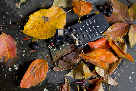 disconnection: Pieces of broken phone laid on the ground covered with fallen leaves, closeup studio shot