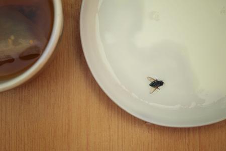 우유와 함께 접시에 착륙, 오버 헤드가 자른 사진