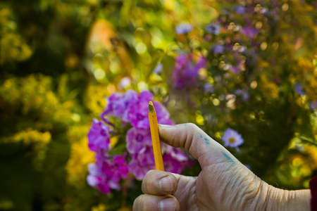 Male hand measuring proportions with pencil, a blurred summer garden in the blurred background