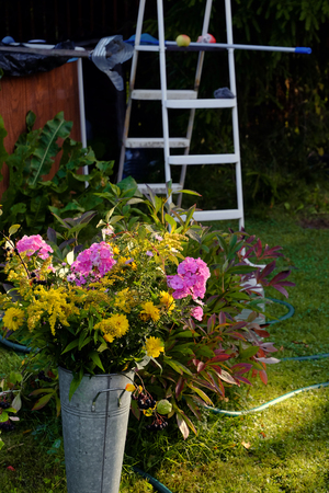 Arranging order in a messy backyard, vertical shot