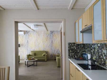 Part of a kitchen and a doorway leading in a living room, interior shot