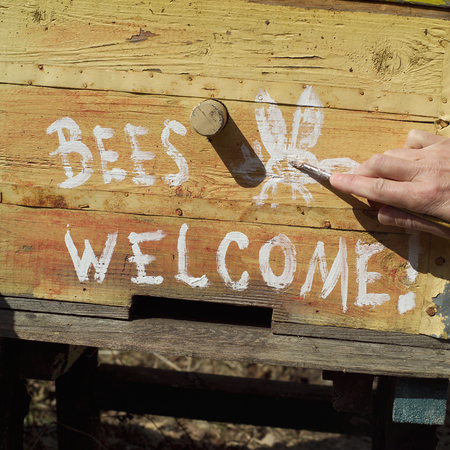 A hand writing Bees Welcome on the empty beehive, outdoor closeup