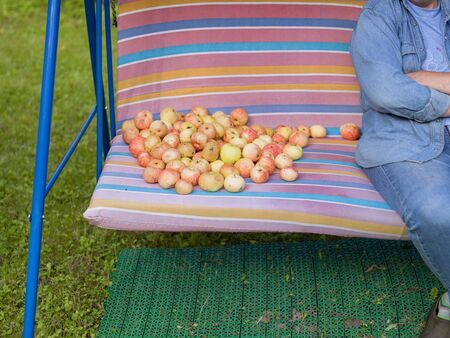 Cropped outdoor shot of a woman sitting on the rocking chair next to the apples