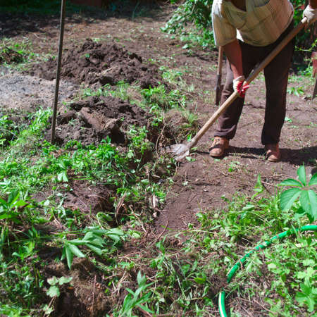 A man digging the soil with spud, focus in the foreground, concept of hard manual labor