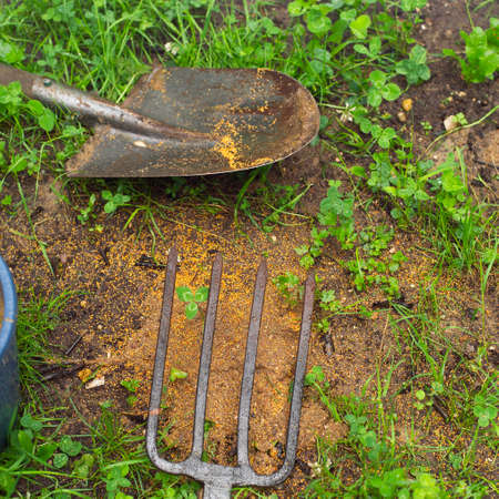 Hand gardening tools and seeds spread out on the ground Stock Photo - 154543515