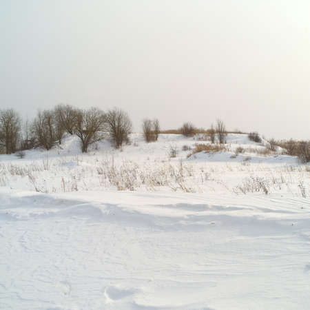 A hill with sparse vegetation, winter daytime scene