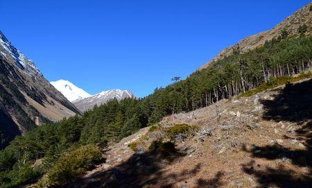 paysage: Near Mount Elbrus. The area of ??mount Elbrus - the Kabardino-Balkarian Republic. Photo taken on: November 3 Sunday, 2013