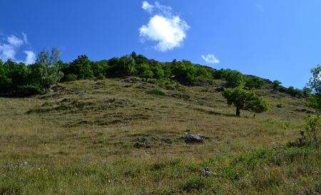 foothill: The foothills of the teberdinskiy reserve. Photo taken on: July 27, Saturday, 2013 Stock Photo
