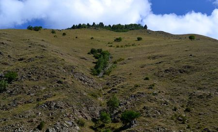 knoll: Foothills of the Caucasus. Trees on a background of white clouds. Photo taken on: July 27, Saturday, 2013 Stock Photo