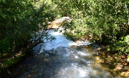 potherb: Mountain river in the reserve. A sunny July day. Photo taken on: July 27, Saturday, 2013 Stock Photo