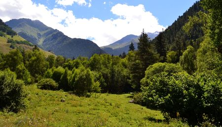 Wildlife sanctuary. The valley on the northern slopes of the Greater Caucasus. Photo taken on: July 27, Saturday, 2013