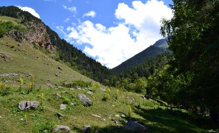 greenness: Mountain slopes of the Caucasus. Photo taken on: July 27, Saturday, 2013 Stock Photo