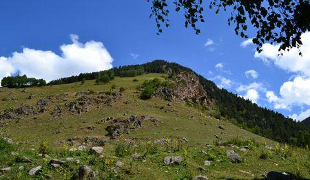 Foothills in Teberdinsky Reserve. Karachay-Cherkess Republic, Russia. Photo taken on: July 27, Saturday, 2013