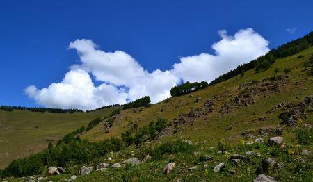 The foothills of the Teberda valley. Karachay-Cherkess Republic, Russia. Photo taken on: July 27, Saturday, 2013
