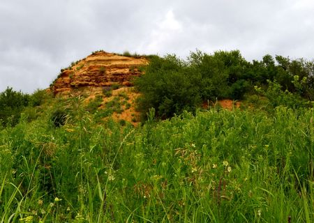 potherb: Yellow limestone, on the background of cloudy sky and among the trees. Aksay district of Rostov region. Photo taken on: June 11, Saturday, 2016 Stock Photo