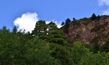 potherb: Soaring eagle in the sky over the rock. Karachay-Cherkessia, Russia. Photo taken on: July 27, Saturday, 2013