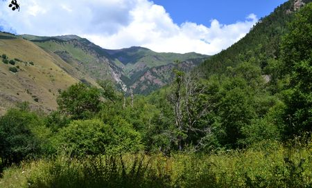 potherb: Valley in Karachay-Cherkess Republic, Russia. Photo taken on: July 27, Saturday, 2013