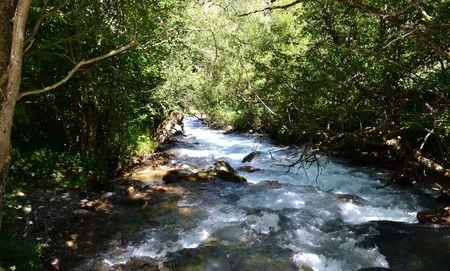 Nature Reserve Teberda Karachayevo-Cherkessia, Russia. Photo taken on: July 27, Saturday, 2013 Editorial