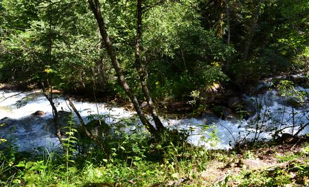 Nature Reserve Teberda Karachayevo-Cherkessia, Russia. Photo taken on: July 27, Saturday, 2013 Stock Photo
