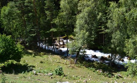 Forest and mountain stream. Photo taken on: July 27 Saturday, 2013 Stock Photo
