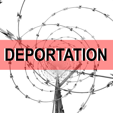 defence: Coil of Steel Barbed Wire on a Metal Fence with DEPORTATION Sign . 3d Rendering Isolated on White Background