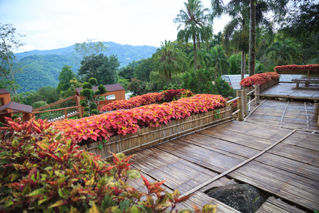 tropical rural house home garden bamboo wooden balcony terrace with natural mountain view background. Interior, Exterior Architectural building and landscape decoration design, living with nature Banco de Imagens