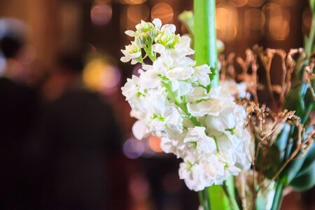 Blooming white flower bouquet on night crowded party background. Decorated Ornamental Flower, Nature, Valentine Day, Event Decoration, Bridal Wedding Reception, Floral Arrangement and Interior concept