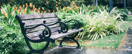 a wooden bench in the middle of beautiful blooming ornamental flower gardens of a natural public park in the Summer or Spring Season. Refreshing and Relaxing Outdoor Activities and Leisure concept