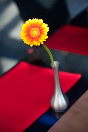 A flower in a vase on the table photo