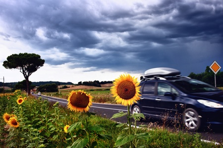 Landscape with sunflowers in Tuscany before a thunderstorm Stock Photo