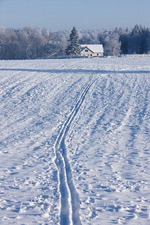 ski traces: Traces of the ski to the house of a winter day
