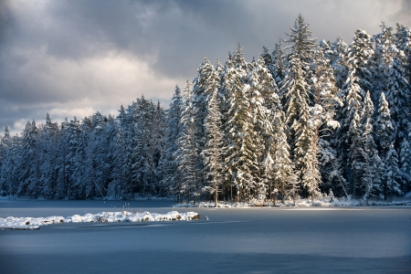 Lake in the ice and forest in winter Stock Photo