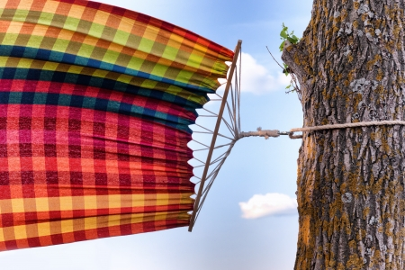 sways: Tied to a tree hammock sways in the wind Stock Photo