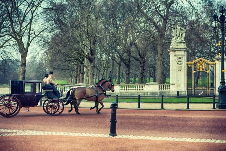 prince charles of england: The carriage and horses in London at Buckingham Palace