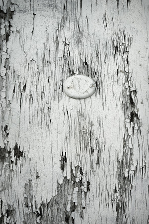 Oval plaque on the old cracked white door Stock Photo