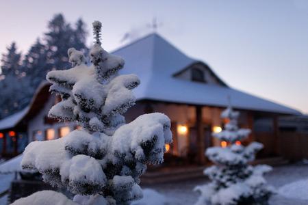Ель в снегу против дома накануне Рождества и Нового года