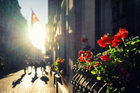 Sun, flowers and flags on the street of Old Riga. Vecriga, Riga, Latvia