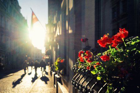 Sun, flowers and flags on the street of Old Riga. Vecriga, Riga, Latvia
